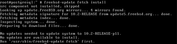 Install FreeBSD updates